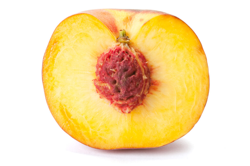 Half a peach with pit intact